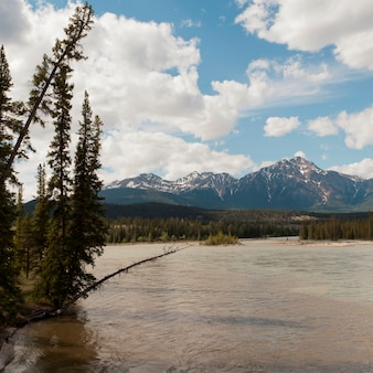 ジャスパー国立公園、アルバータ、カナダ、バックグラウンドで山々とアサバスカ川