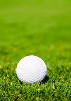 芝生の上のゴルフのボール。