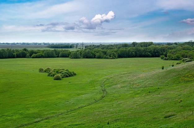 Зеленая долина в сельской местности