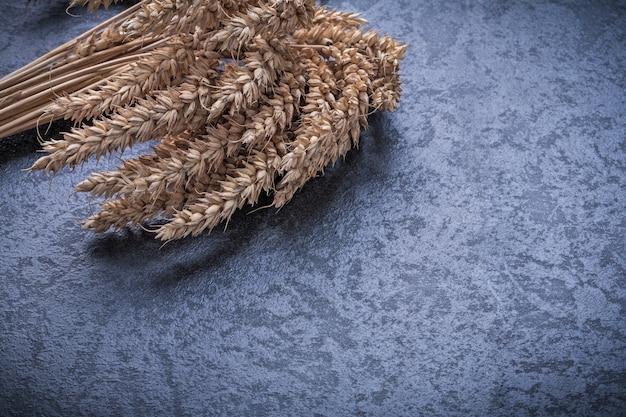 Спелые колосья пшеницы и ржи концепция еды и питья