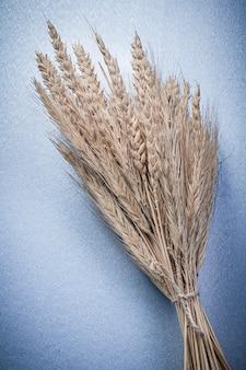 Композиция из колосьев ржи пшеницы на синей поверхности