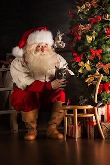 Санта-клаус с домашней кошкой