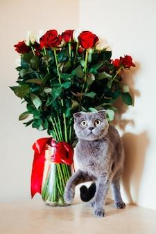 Маленький котенок движется перед красными и белыми цветами