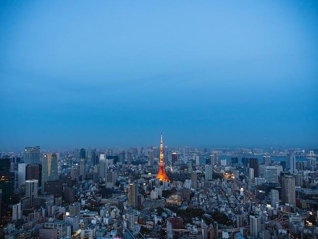 Панорамный закат вид на город токио. знаменитый токийский скайтри.