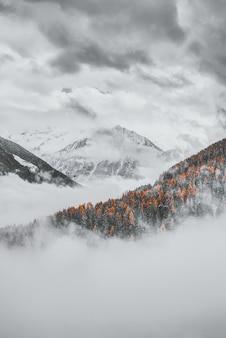 曇り空の下で雪をかぶった山