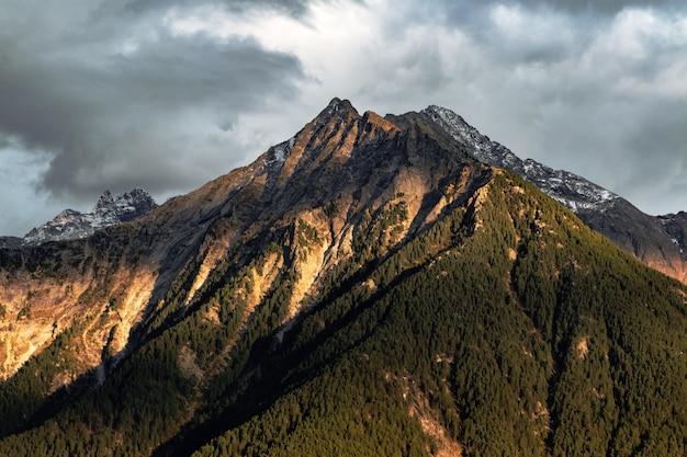 緑の山の風景