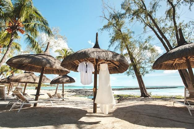 ウェディングドレスと新郎のスーツ。島。ヤシの木。ビーチ。砂。空。