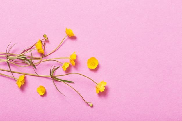 ピンクのテーブルに黄色のキンポウゲ