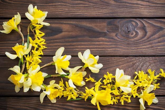 暗い背景の木に黄色い水仙