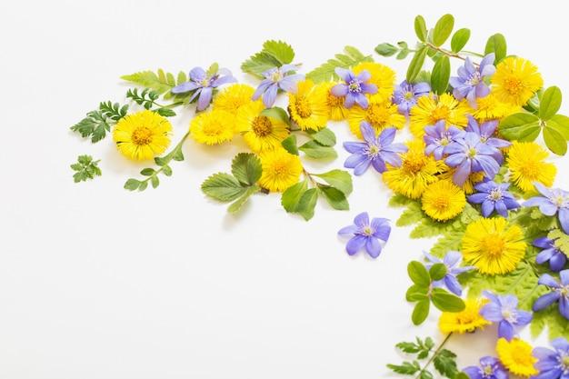 用紙の背景に黄色と紫の花を春します。
