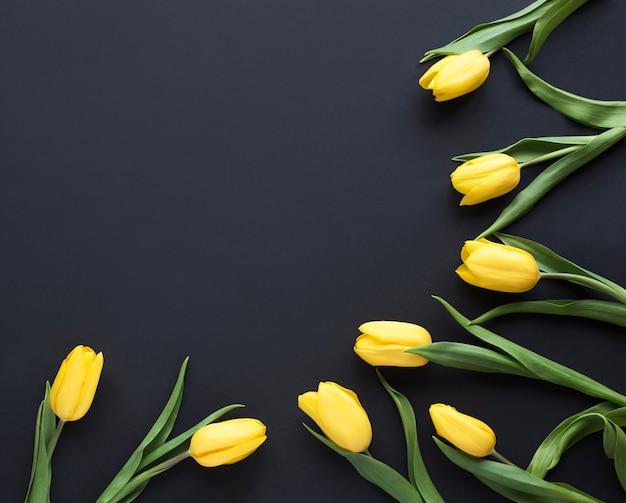 春の花。黒の背景に黄色のチューリップの花で作られたフレーム。フラット横たわっていた、トップビュー..テキストを追加します。