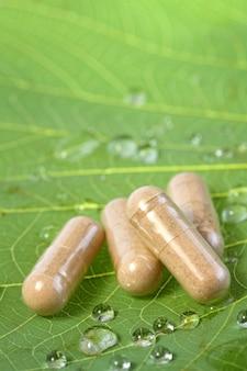 葉の上の自然医学