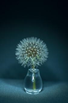 小さなガラスの花瓶にタンポポのクローズアップ