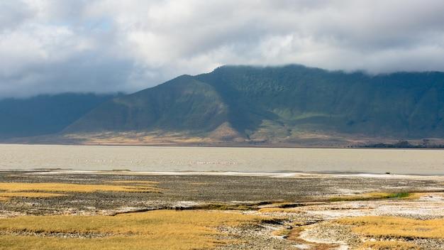 Захватывающий пейзаж с туманными зелеными горами в нгоронгоро, танзания
