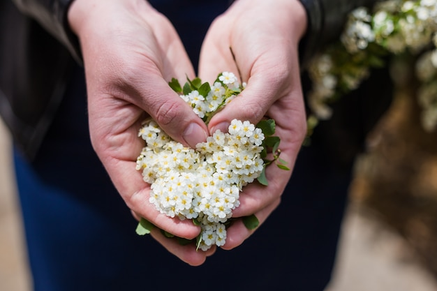 Крупным планом руки с цветами. белые цветы в форме сердца.
