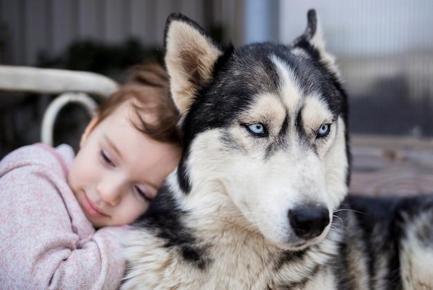女の子が犬を抱擁します。犬は人の親友です。ハスキー犬
