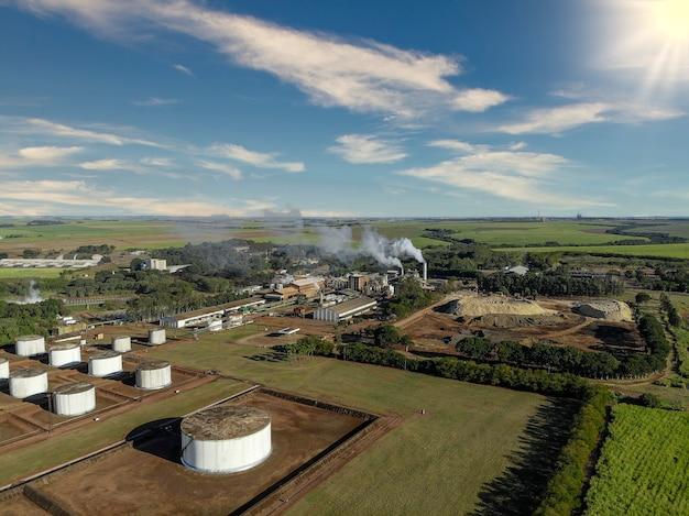 Сахарный тростник, завод по производству сахара и алкоголя