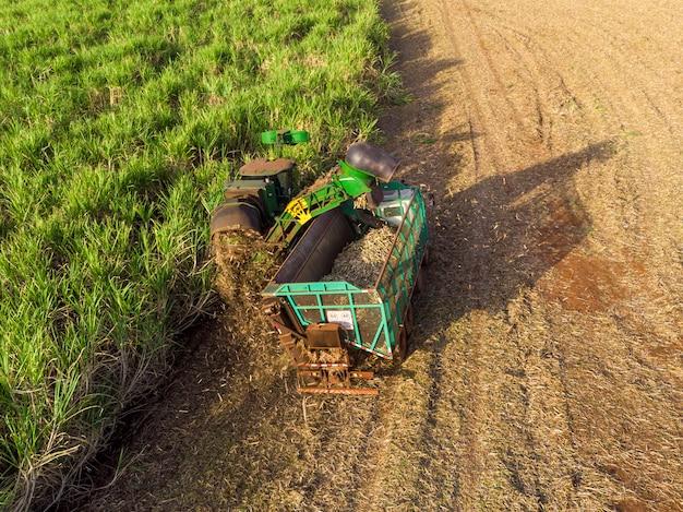 Воздушное поле сахарного тростника в бразилии