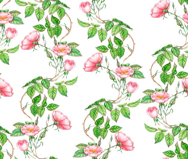 Ручной обращается акварель бесшовный фон с розовыми нежными цветами шиповника