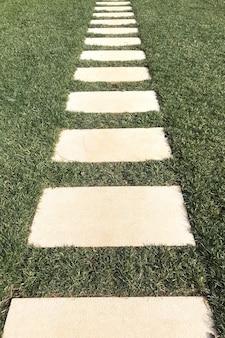 庭の芝生の芝生の横断歩道