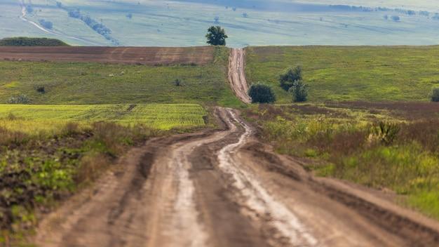 緑の野原を通る田舎道、地平線を越えて遠くまで伸びる丘