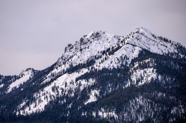 Природные горы красивой зимой