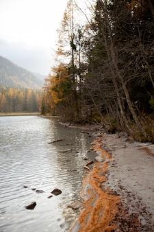 Озеро, окруженное лесами и горами