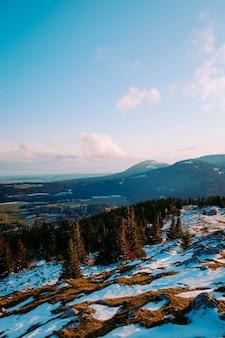 Пейзаж горы и лес зимой
