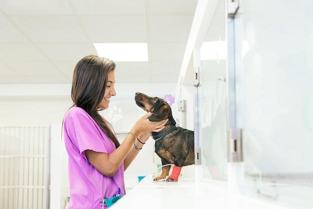 Ветеринарный врач обнимает красивую собаку.