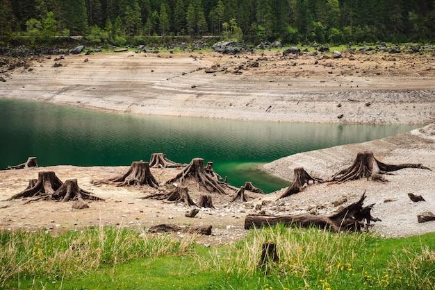 山での森林伐採の結果