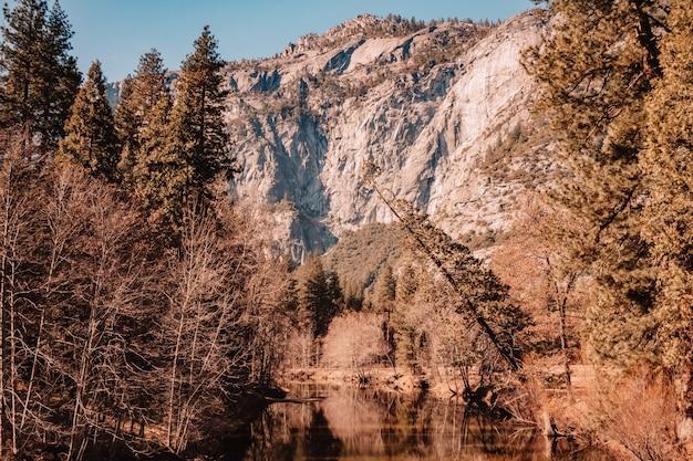 風景ヨセミテ国立公園カリフォルニア
