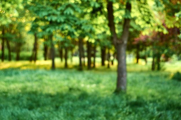 自然なぼやけた都市公園の背景。