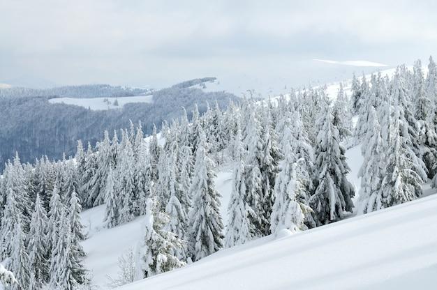 ケーブルカーのある美しい絵のような冬の坂