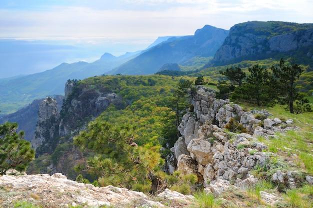山の頂上からの眺めペトリ
