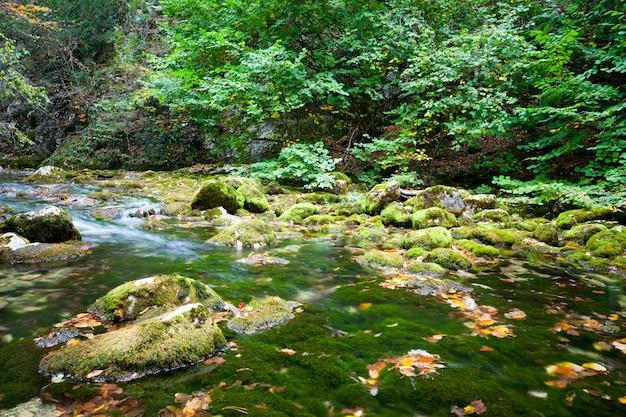夏の日に緑の芝生の丘に囲まれた小さな滝と緑の澄んだ静かな水のラグーン