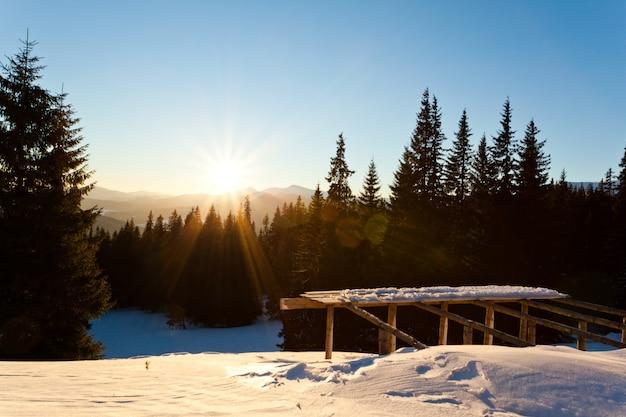 針葉樹の冬の森とスキージャンプの上の日没の風景
