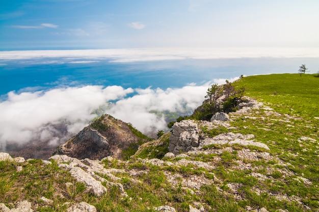 コケ、山の側の木、谷の緑の草で覆われた前景の巨大な石