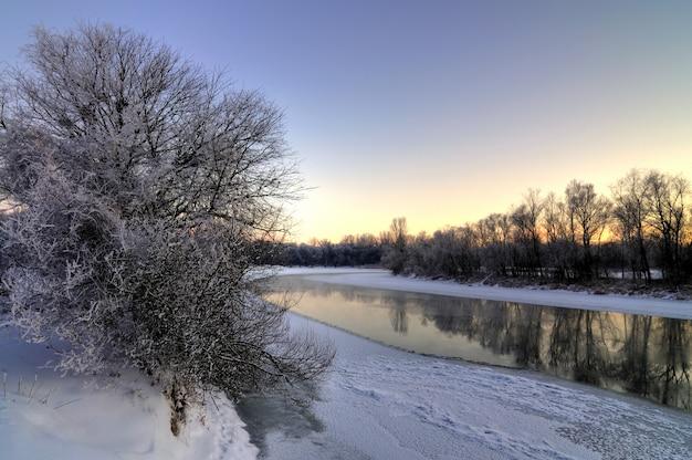 Красивый пейзаж реки между деревьями
