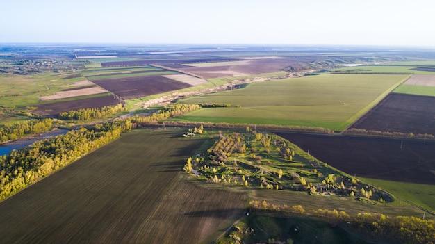 農作物がまき散らされた畑の上空を飛ぶ