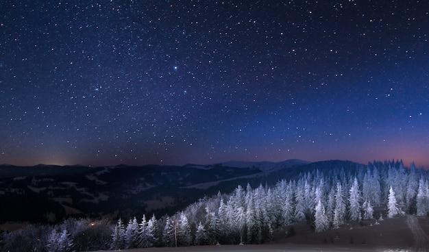 魅惑的な夜の風景の雪に覆われたモミの木