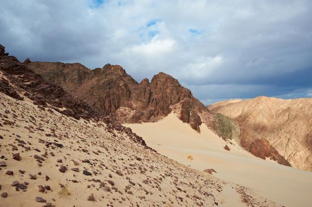 Долина в синайской пустыне с песчаными дюнами и горами