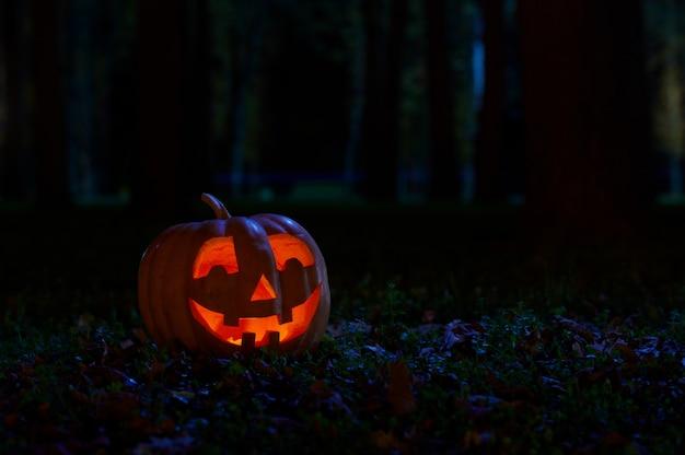 公園のハロウィンかぼちゃ