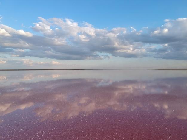 ピンクの塩湖の空撮