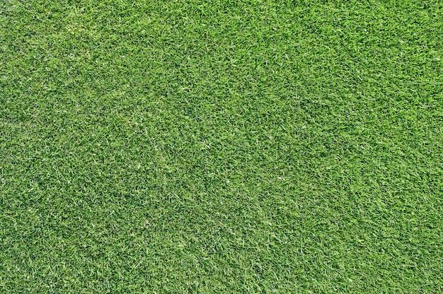 ゴルフコースからの美しい緑の草のテクスチャ