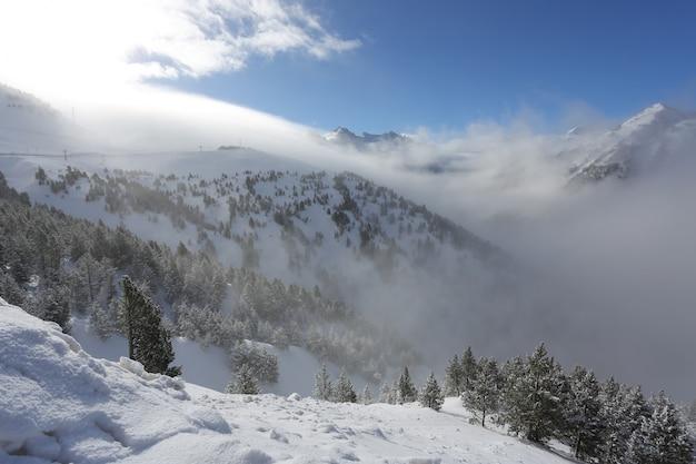 晴れた凍るような日に雪、霧、雲に覆われた森のある山々の上