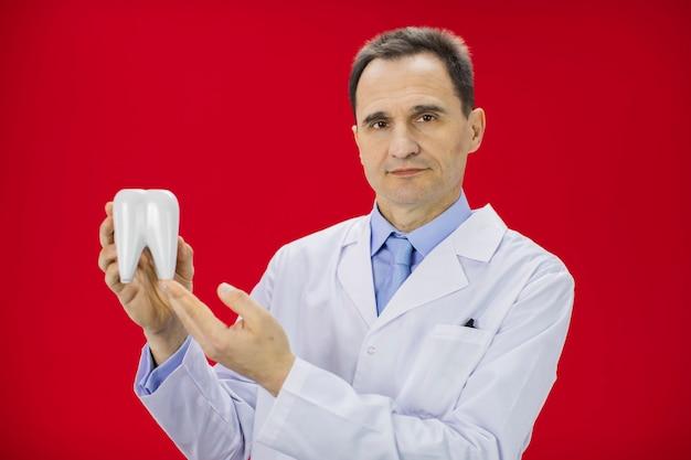 Портрет дантиста держа модель зуба изолированный на красном цвете