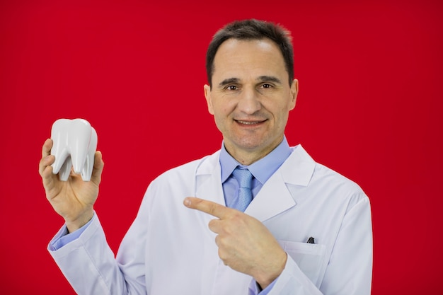 Портрет улыбающегося дантиста, держащего модель зуба, изолированного на красном