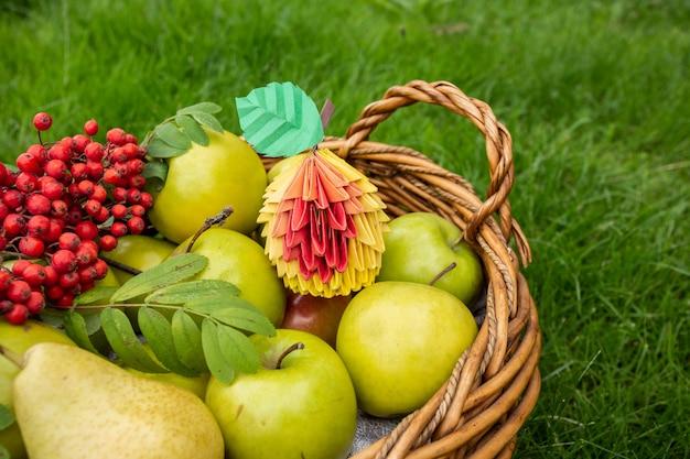 秋のリンゴの収穫、緑の草の籐のバスケット、赤い果実のクローズアップとトップビューペーパークラフト折り紙アートのコンセプト