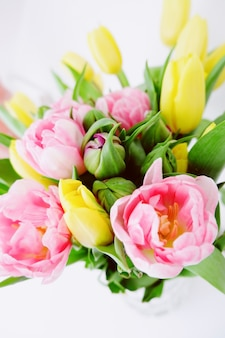 時間の間に花自然素晴らしい素晴らしい新しい美しく写真