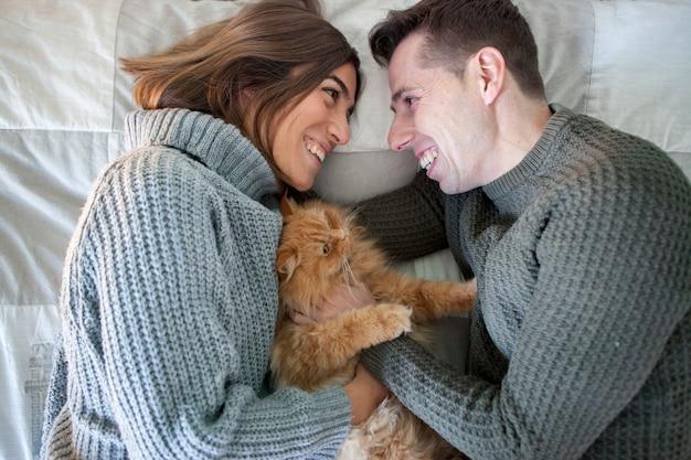 養子縁組の猫を避難所から撫でるカップル